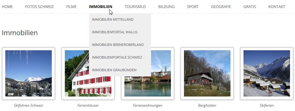 immobilien solothurn033